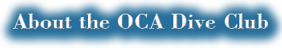 About the OCA